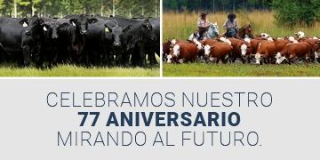 Acompañamos el lanzamiento de contratos a futuro de ganado