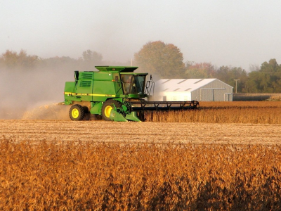 The soybean harvest adds volume and alters the market