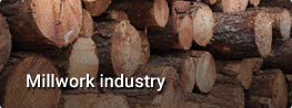 link-industria-en
